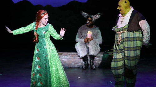 REVIEW: SCCT's Elaborate 'Shrek' Has Poignant Message for Kids, Adults